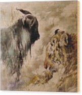Amur And Timur Wood Print
