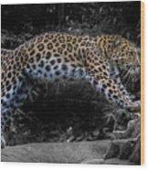 Amur Leopard On The Hunt Wood Print