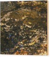 An Abstract Fall Reflection Wood Print