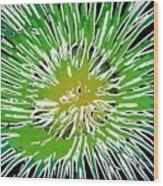 An Abstract Scene Of Sea Anemone 2 Wood Print