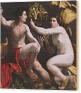 An Allegory Of Fortune 1538 Wood Print