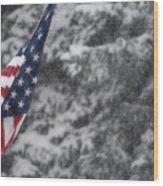 An American Winter Wood Print