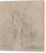 An Ancient Tree With Figures In A Landscape Wood Print