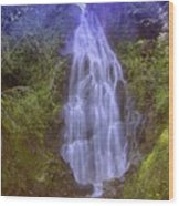 An Angel In The Falls  Wood Print