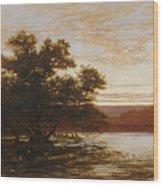 An Australian Mangrove. Ebb Tide Wood Print