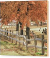 An Autumn Day At The Park Wood Print