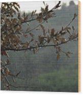 An Autumn Day Wood Print