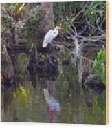 An Egrets World Wood Print