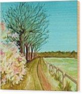 An English Footpath Wood Print