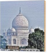 An Extraordinary View - The Taj Mahal Wood Print