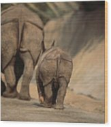 An Indian Rhinoceros And Her Baby Wood Print by Michael Nichols