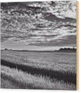 An Iowa Sunset Wood Print