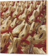 An Ocean Of Bunnies Wood Print