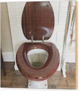 An Old Toilet Wood Print