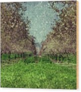 An Orchard In Blossom In The Eila Valley Wood Print