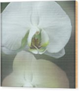 An Orchid For You Wood Print