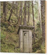 An Outhouse In A Moss Covered Forest Wood Print by Michael Melford