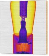 An X-ray Of Historic Audion Vacuum Tube Wood Print