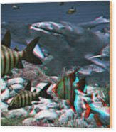 Anaglyph Whales Wood Print