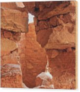 Anasazi Cliff Dwellings #8 Wood Print