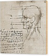Anatomical Drawing By Leonardo Da Vinci Wood Print