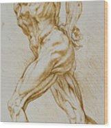Anatomical Study Wood Print