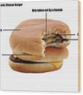Anatomy Of A Generic Cheese Burger Wood Print by Michael Ledray