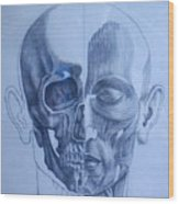 Anatomy Wood Print