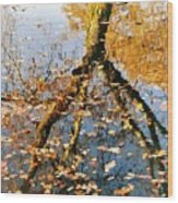 Anchorage In Autumn Wood Print