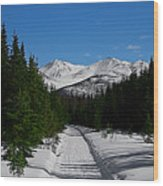 Anchorage Mountains Wood Print
