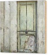 Ancient Doorway Rome Italy Pencil Wood Print