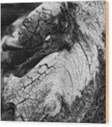 Ancient Knight's Stead Wood Print