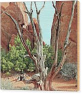 Ancient Lands Wood Print