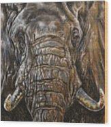 Ancient Memories Wood Print