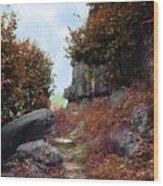 Ancient Pathway Wood Print