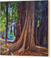Ancient Roots Of Sicily Wood Print