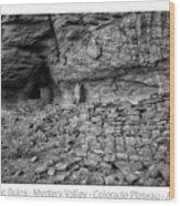 Ancient Ruins Mystery Valley Colorado Plateau Arizona 02 Bw Text Wood Print