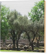 Ancient Ruins Temple Grounds 2 Wood Print