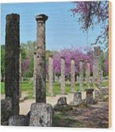 Ancient Ruins Tree By Columns Wood Print