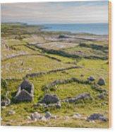 Ancient Settlement In The Burren Wood Print