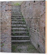 Ancient Stairs Rome Italy Wood Print