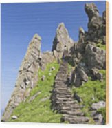 Ancient Steps Leading To Celtic Monastery, Skellig Michael, County Kerry, Ireland Wood Print