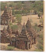 Ancient Stupa Wood Print