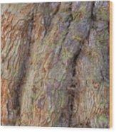 Ancient Tree Skin Wood Print
