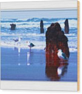 Ancient Trees And Seagulls At Neskowin Beach Wood Print