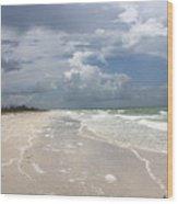 Anclote Key Beach Wood Print