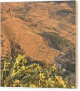 Andalucian Golden Valley Wood Print