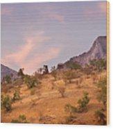 Andalucian Landscape Near Zahara De La Sierra Spain Wood Print