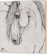 Andalusian Horse Portrait 2015 12 08 Wood Print