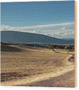 Andalusian Landscape. Ronda Wood Print